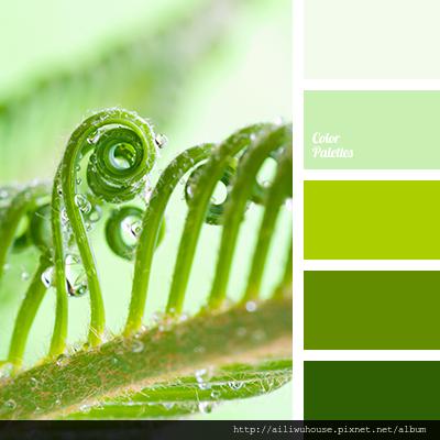 color-palette-2594.png