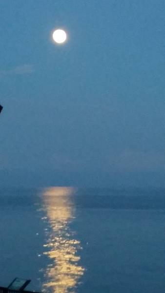 旭日亭出現的是太陽還是月亮?