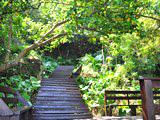 山豬溝-小琉球旅遊