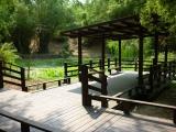 小琉球-竹林生態池