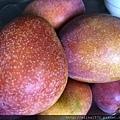小琉球必吃的芒果