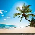 Beach-of-Dreams-4K-Wallpaper.jpg