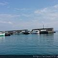 大福漁港107 (18).jpg