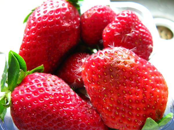 發霉的草莓