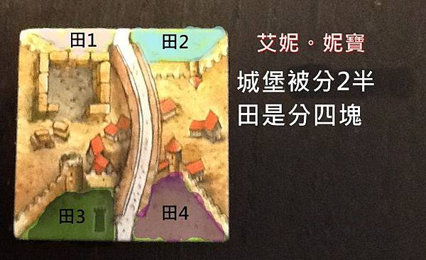 Board Game 桌遊 Carcassonne 卡卡頌 The Tower8.JPG