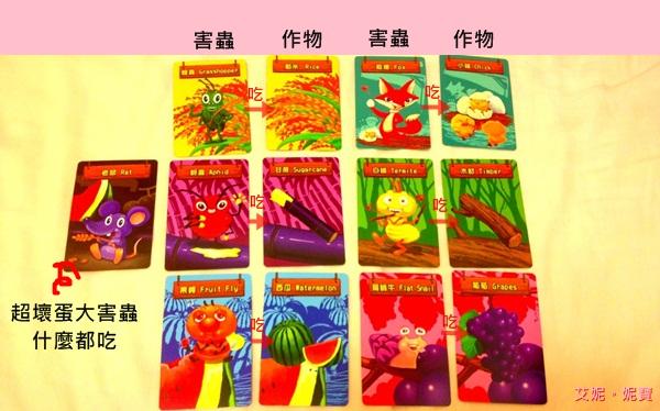 AININIBO艾妮妮寶_Board Game 桌遊 Greedy Farm 貪心農場5