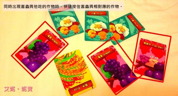 AININIBO艾妮妮寶_Board Game 桌遊 Greedy Farm 貪心農場4