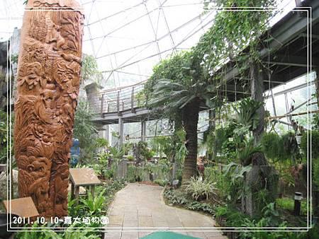 嘉大植物園 (4).jpg