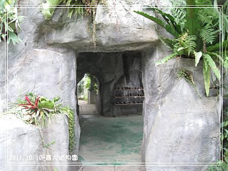 嘉大植物園 (6).jpg