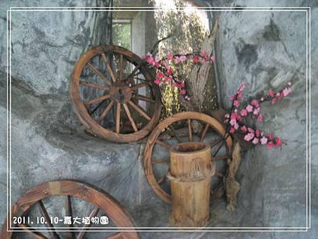 嘉大植物園 (7).jpg