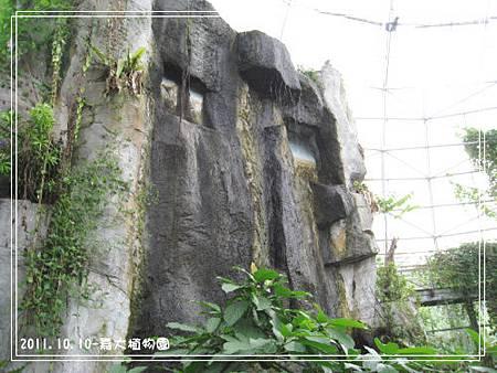 嘉大植物園 (8).jpg