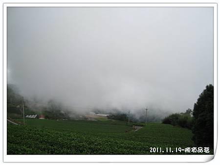 IMG_1533.jpg