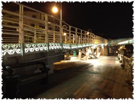 西子灣 (8)