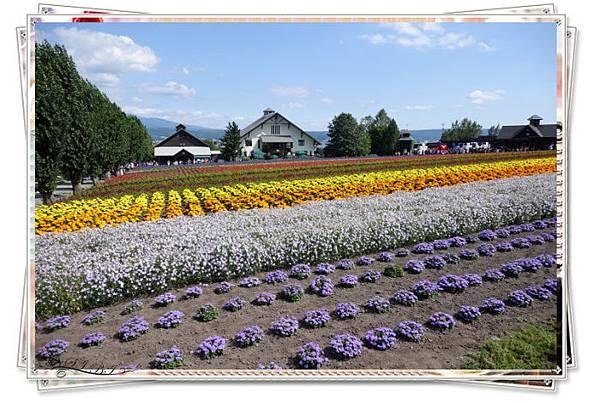 富田農場(19).jpg