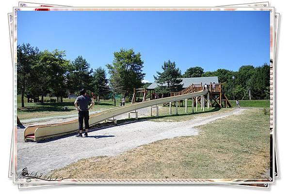 カムイの杜公園 (4).jpg