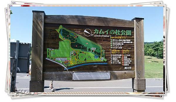 カムイの杜公園 (10).jpg