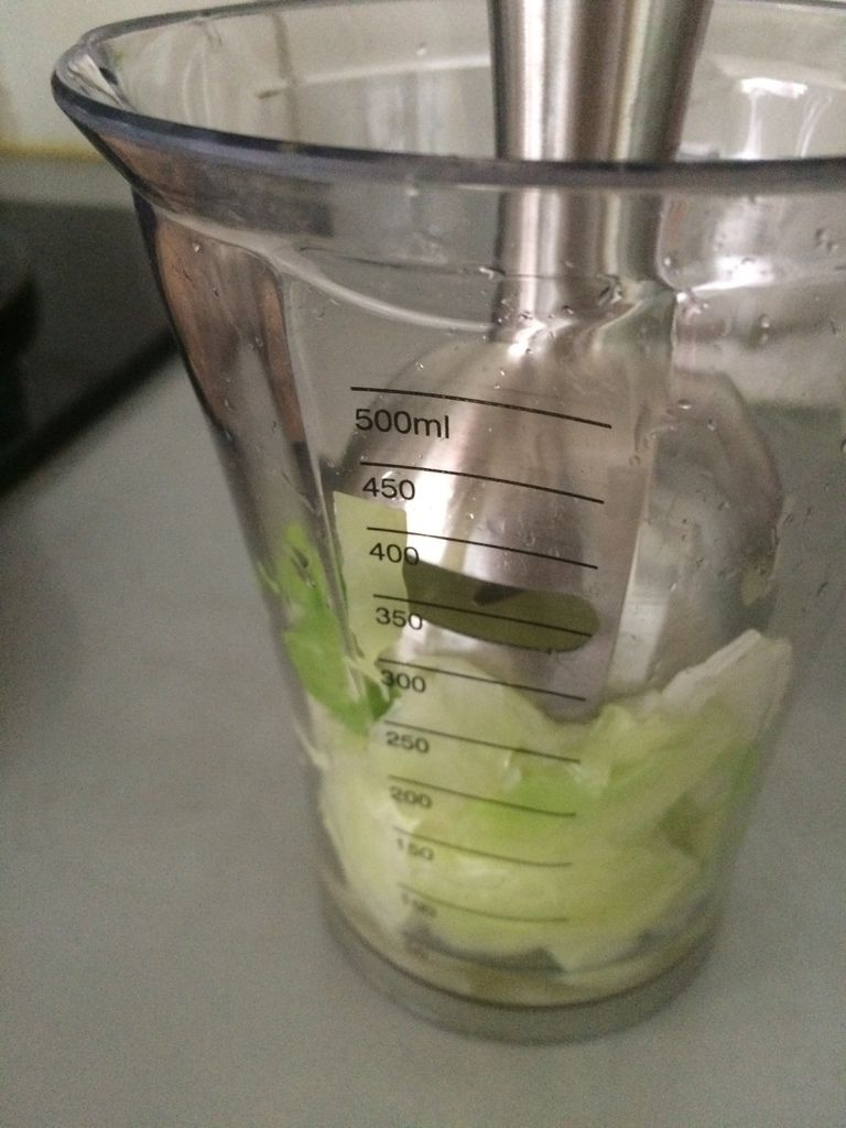 [4M] 高麗菜泥