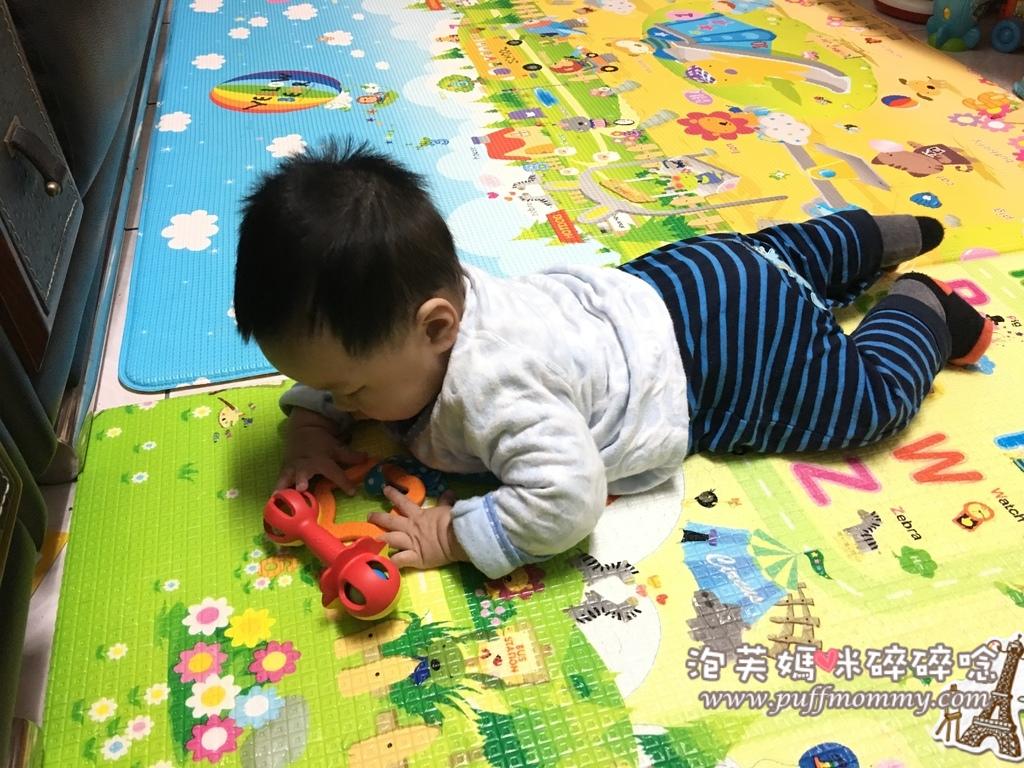 Bioserie 幼兒益智玩具