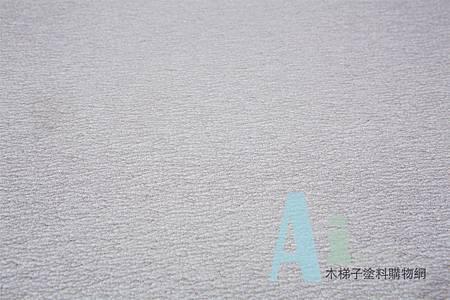 油漆工具- 富士星砂紙
