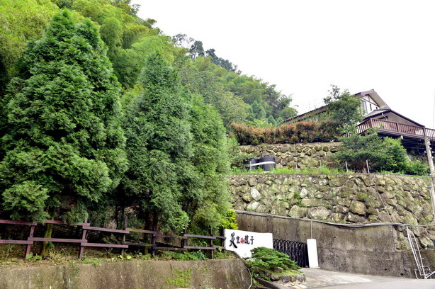 竹茶的天空~~進入竹山八卦茶區交錯的竹海深處