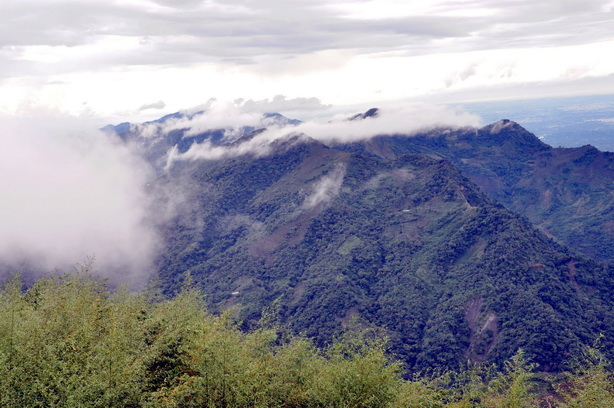 隙頂傳說~~二延平步道上的雲霧飄渺