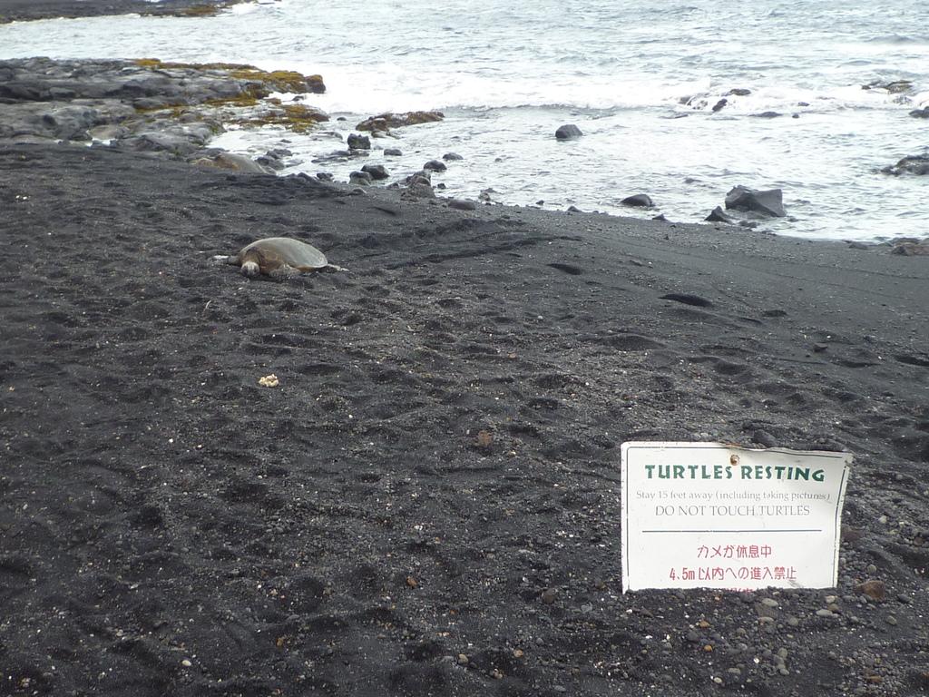 D05-144-Black Sand Beach.JPG