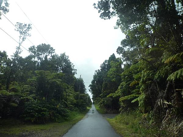 D06-031-At The End of Road B&B.JPG