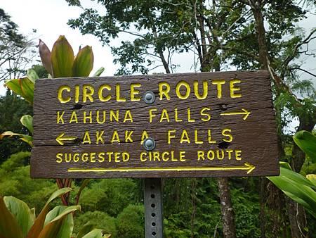 D06-099-Akaka Falls.JPG