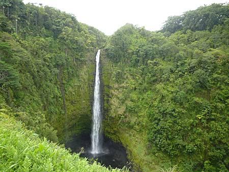 D06-118-Akaka Falls.JPG