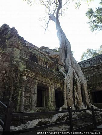 D03-065-塔普倫寺