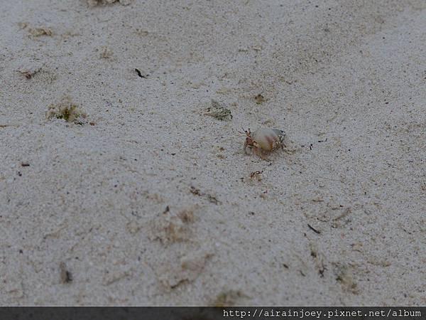 D04-048-海洋博公園翡翠海灘