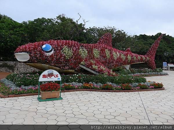 D04-076-海洋博公園