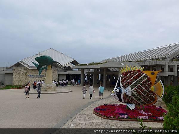 D04-101-海洋博公園