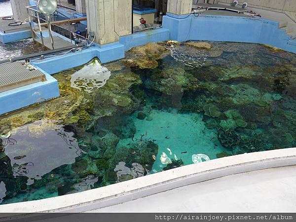 D04-114-海洋博公園