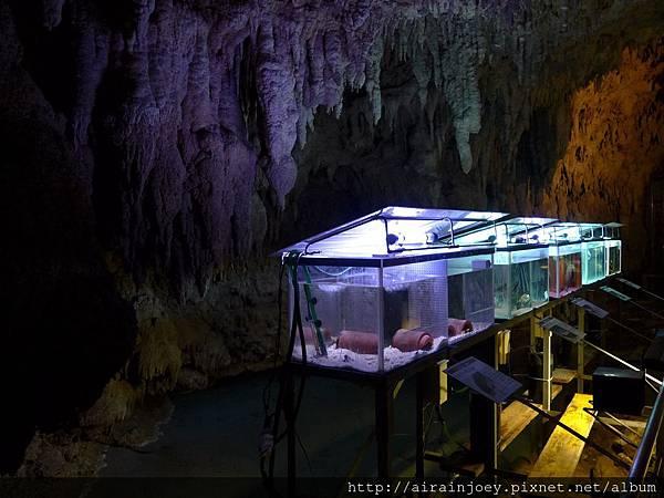 D05-255-玉泉洞與琉球王國村.jpg