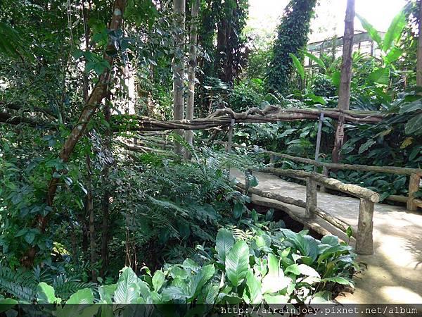 D07-167-Mae Fah Luang Gardens.jpg