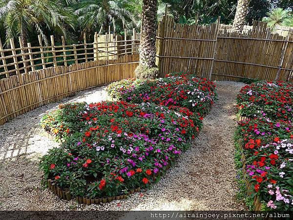 D07-226-Mae Fah Luang Gardens.jpg