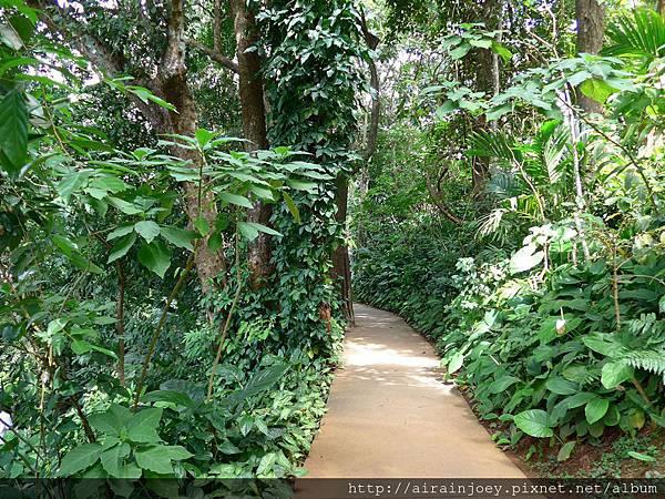 D07-277-Mae Fah Luang Gardens.jpg