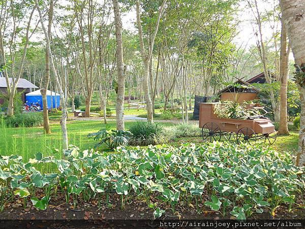 D08-225-Singha Park.jpg