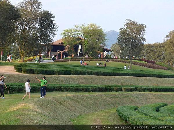 D08-255-Singha Park.jpg