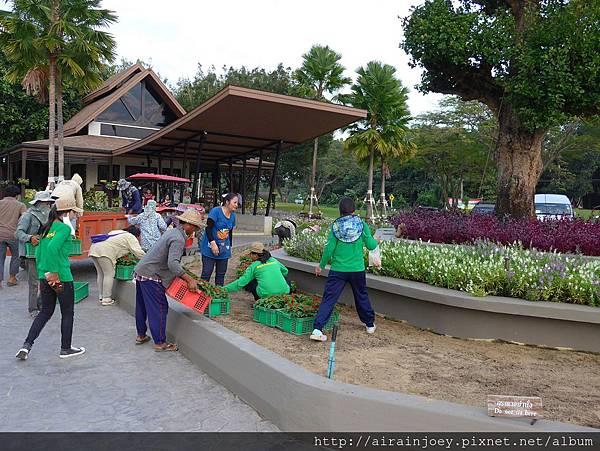 D08-269-Singha Park.jpg