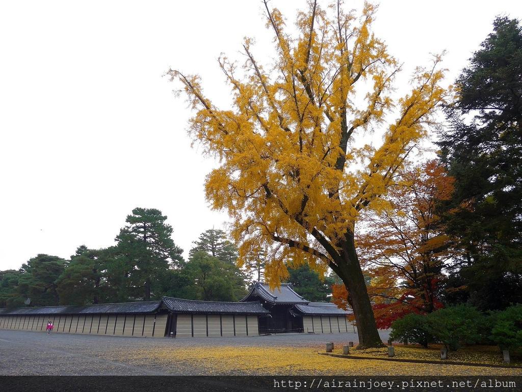 D02-026-京都御苑.jpg