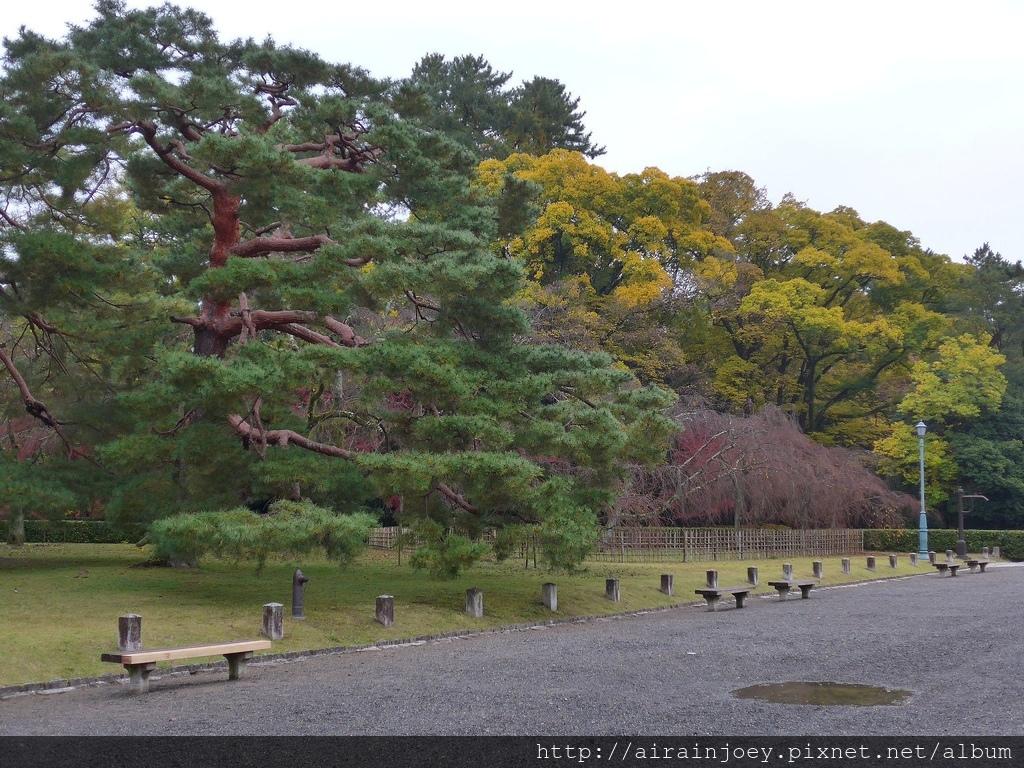 D02-031-京都御苑.jpg
