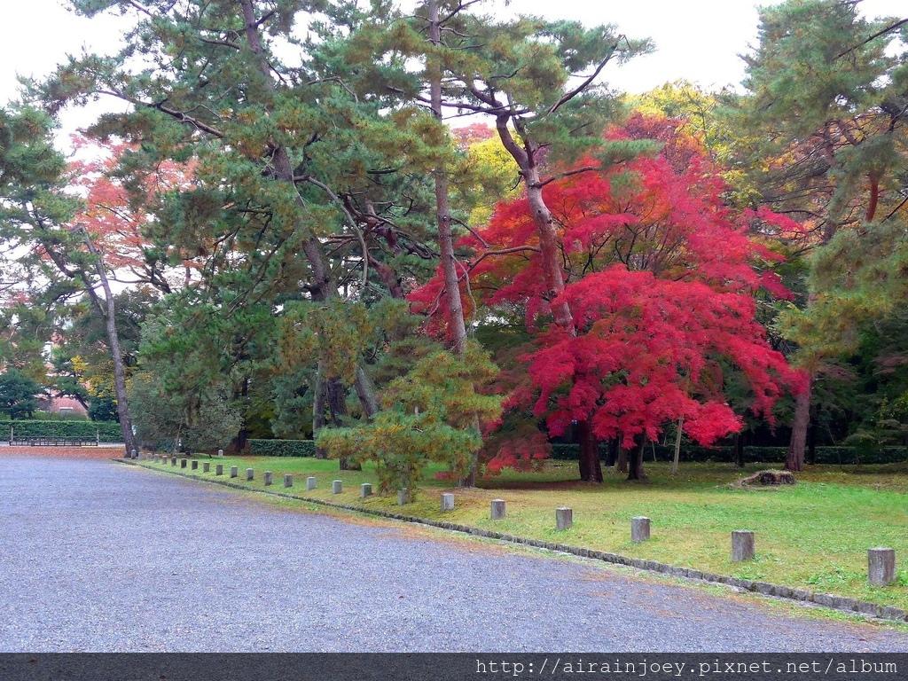 D02-057-京都御苑.jpg