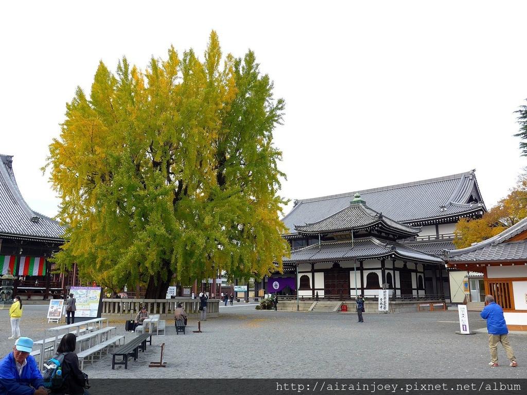 D02-323-西本願寺.jpg