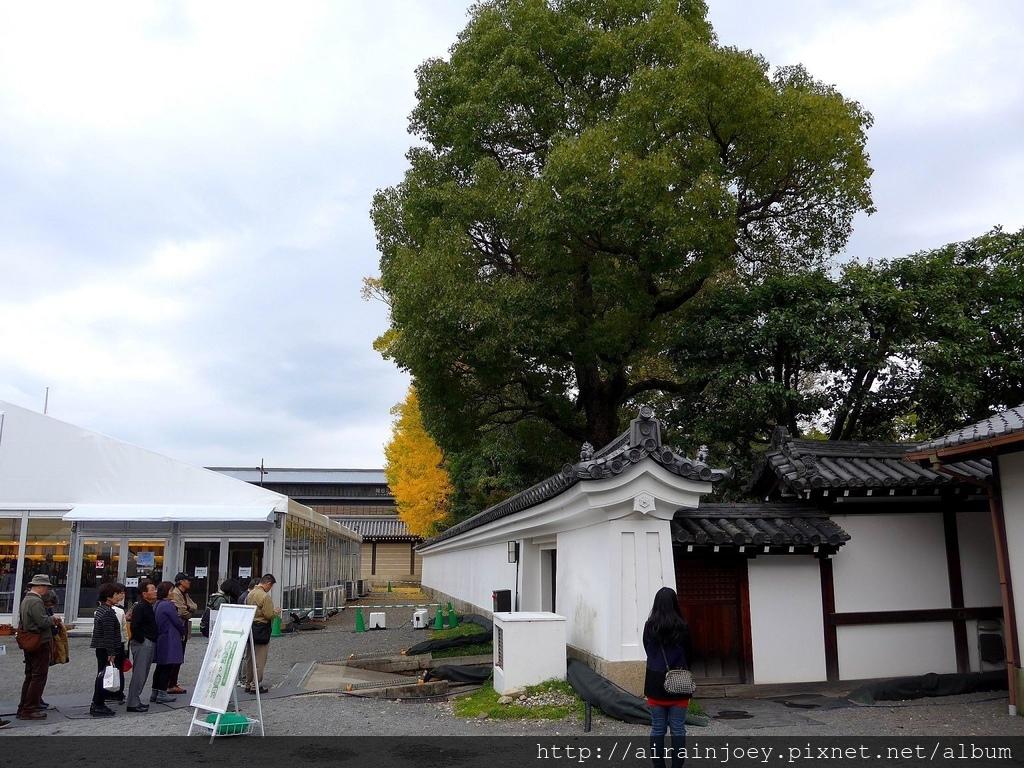 D02-342-西本願寺.jpg