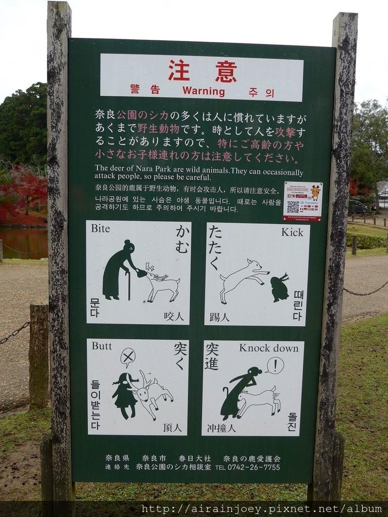 D03-085-東大寺.jpg