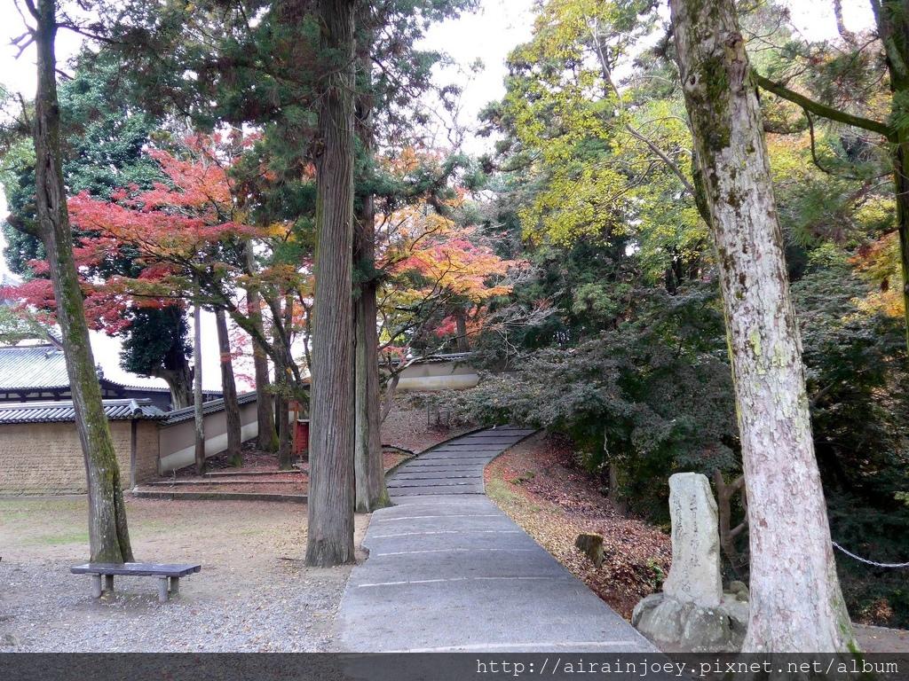 D03-091-東大寺.jpg