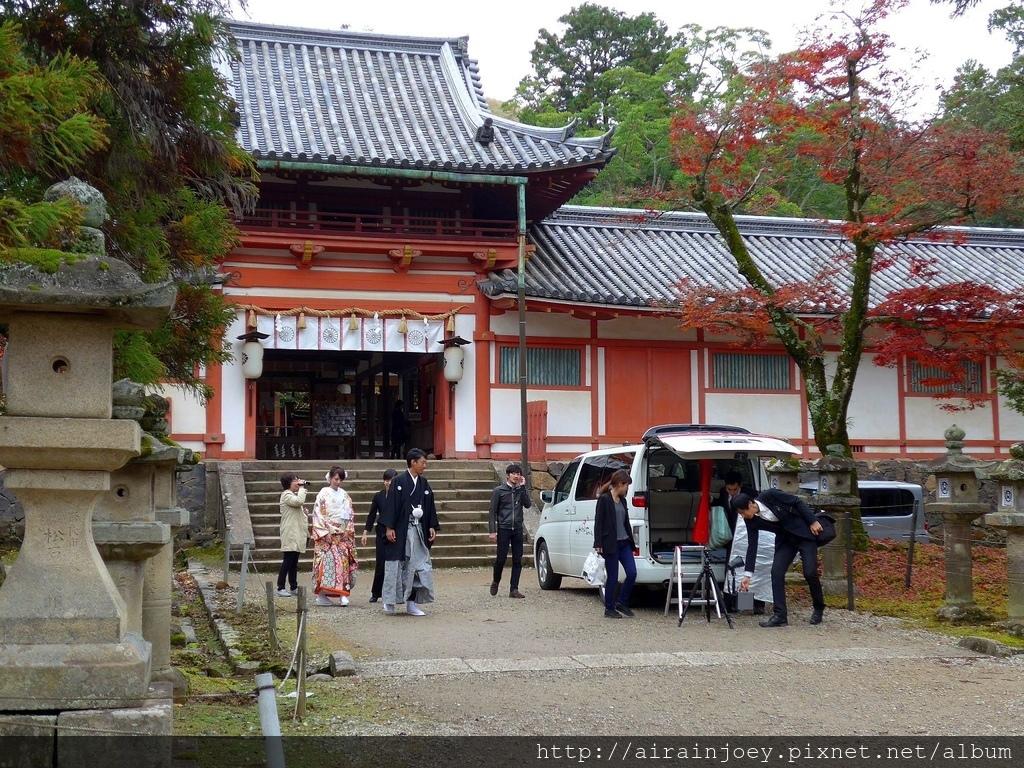 D03-215-奈良公園.jpg