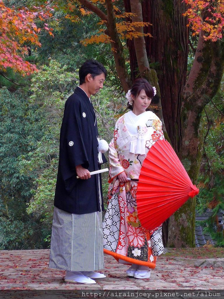 D03-220-奈良公園.jpg